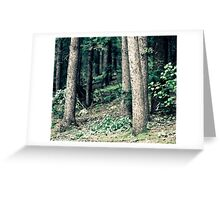 lost in the woods Greeting Card