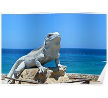 Lizard King Isla Mujeres Poster