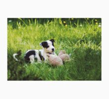Border Collie Puppy One Piece - Short Sleeve