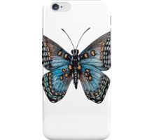 Red-spotted Purple Butterfly  iPhone Case/Skin