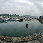 Fish Eye Image of Lyme Harbour, Dorset.UK  by lynn carter