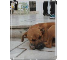 Sleeping Stray iPad Case/Skin
