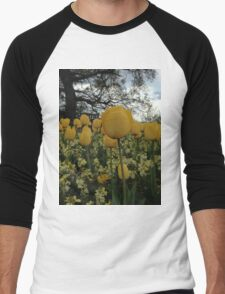 Yellow Tulips Men's Baseball ¾ T-Shirt