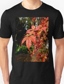 Autumn colours Unisex T-Shirt