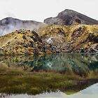 Active red crater at Tongariro National Park by Funkylikeabee