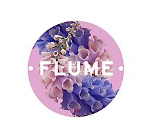 flume skin - circle Photographic Print