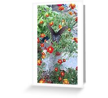 Butterfly on Marigolds Greeting Card
