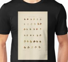 Thesaurus conchyliorum Monographs of genera of shells George Brettingham Sowerby 1887 V1-V5 380 Unisex T-Shirt