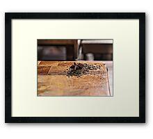 Spice Framed Print