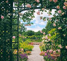 Rose Pergola by Jessica Jenney