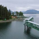 Icy Strait Point, Alaska by Elizabeth  Lilja