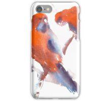 ROSELLA DELIGHT  iPhone Case/Skin