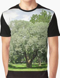 Beautiful Willow Tree Graphic T-Shirt