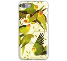 Carolina Parakeet iPhone Case/Skin