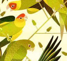 Carolina Parakeet Sticker