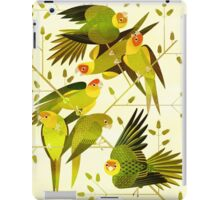 Carolina Parakeet iPad Case/Skin