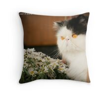 Norman with the daisies Throw Pillow