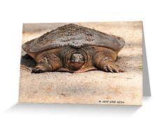 Florida Softshell Turtle (Apalone ferox) Greeting Card