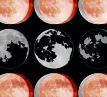 Crazy Moon Sticker