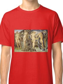 Edward Burne-Jones  - Perseus And Andromeda 1876. Burne-Jones  - people portrait. Classic T-Shirt