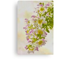 Butterfly Flowers  Canvas Print