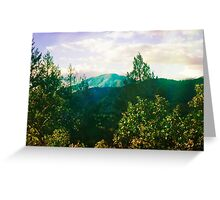 wilderness forest mountain photograph Greeting Card