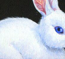 White Rabbit & Red Roses Sticker
