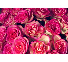 large bouquet of pink roses Photographic Print