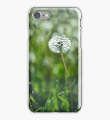 Beautiful white dandelion with seeds on green background iPhone Case/Skin