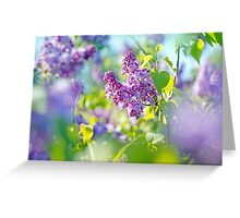 Green branch with spring lilac flowers Greeting Card