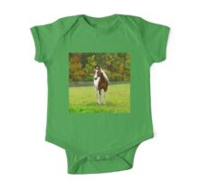 Charming Pinto Horse One Piece - Short Sleeve