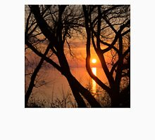 Sunrise Through the Willows - Lake Ontario, Toronto, Canada  Unisex T-Shirt