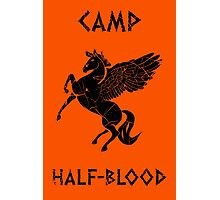 Camp Half-Blood (Distressed) Photographic Print