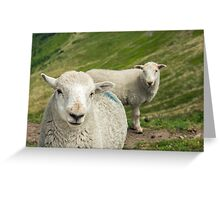 The Lamb Brothers Greeting Card