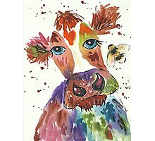 Quirky colourful cow and bumble bee Photographic Print