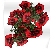 Red Roses flora Poster