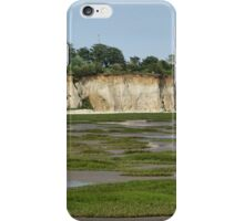 Mud flats and white cliffs iPhone Case/Skin