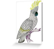 White Cockatoo Greeting Card