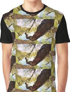 Tree Trunk Graphic T-Shirt