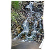 Mountain stream - Lady Talbot drive  Poster