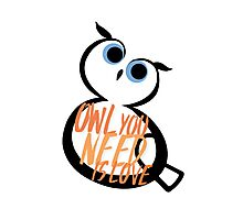 Owl You Need Is Love Photographic Print