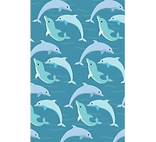 Dolphins Swimming Photographic Print