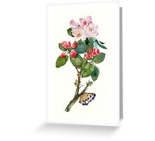 Apple flowers Greeting Card