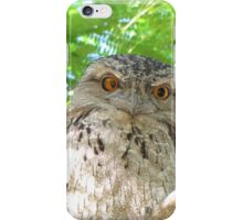 Tawny Frogmouth sitting in tree iPhone Case/Skin