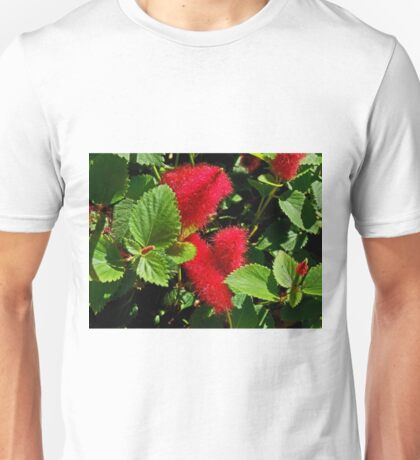 Robust Red Unisex T-Shirt