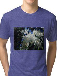 Budding Blossoms Tri-blend T-Shirt