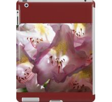 Rhododendron Blossoms - Soft Afternoon Light iPad Case/Skin