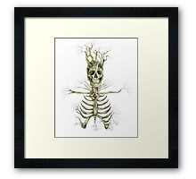 Death and Rebirth Framed Print