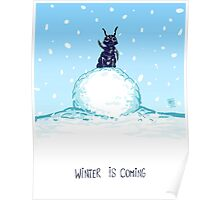 Snow Flea Poster