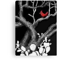 The return of the Cardinal  Canvas Print